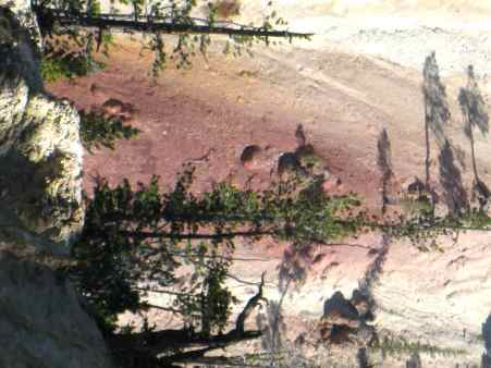 Pink Rock, Grand Canyon of the Yellowstone